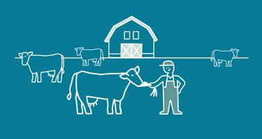 Arla farmers produce feed locally