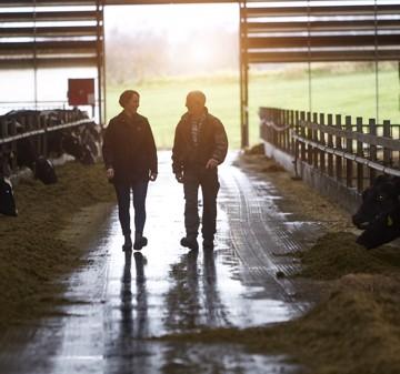 Big dataempowers Arla farmerstodecarbonise dairyat afasterpace
