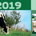 Now released: Arla's 2019 annual and social responsibility reports