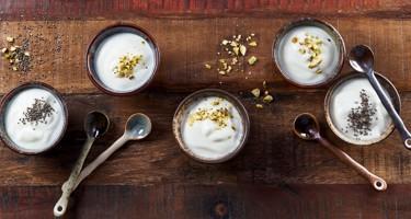 Yoghurtens historie