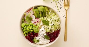 Tirsdag d. 2/2 – Opskrift på sund frokost