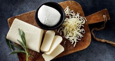 Hvad er mozzarella?