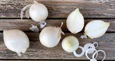 Salatløg
