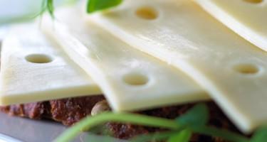 Er danbo-ost laktosefri