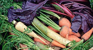 8 tips til mere klimavenlig madlavning