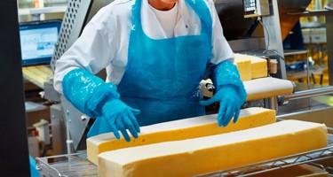 Hvordan bliver ost produceret?