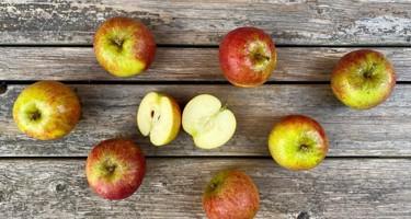 Cox Orange æble
