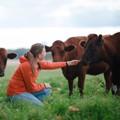 Nu kan kor bli terapeuter – boka KoBT via initiativ från Arla