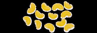pastasorter-11-pipe-rigate-482x166.png