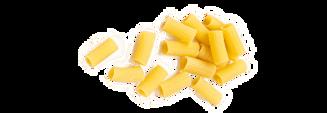 pastasorter-12-rigatoni-v2-482x166.png