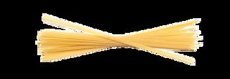 pastasorter-13-spaghetti-v2-482x166.png